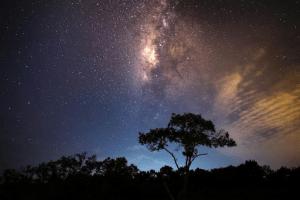 Southern Hemisphere Skyline